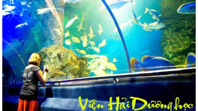Du lịch Nha Trang với bé cưng