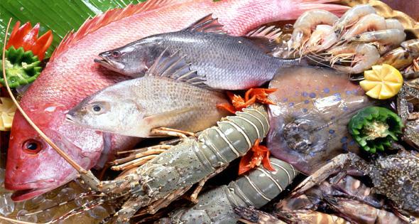 cá-biển-Ghi nhớ ngay các loại thực phẩm ngừa ung thư vú cực hiệu quả