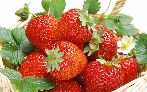 dau-tay-Ghi nhớ ngay các loại thực phẩm ngừa ung thư vú cực hiệu quả
